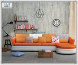 Modernes Sofa, Schnittsofa, Qualitäts-ledernes Sofa (M303)