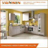 Toon Zaal Modern Ontwerp het Modulaire Meubilair van de Keukenkast met de Comités van de Deur van de Lak