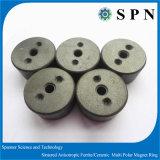 Ringen van de magneet van Ferriite de Permanente Veelpolige Gesinterde voor Micro- Motor
