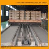 Brique En argile four tunnel dans la ligne de production de briques