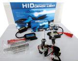Facile installer la mini ampoule CACHÉE de xénon de 12V 35W