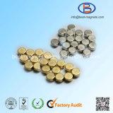 Aangepaste Magneten NdFeB met Gouden Deklaag