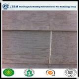 Panneau de voie de garage décoratif externe de ciment de fibre de grain en bois