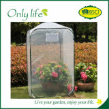 Invernadero verde respirable económico de Onlylife mini