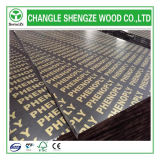 Quality superior 18mm Film Faced Plywood com Logo