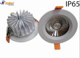 Sumergible Light 20W Downlight LED con 10 grados de ángulo de haz