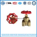Латунные шарик и запорная заслонка для штуцера счетчика воды