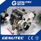 Changchai refroidi à l'eau Deux cylindres moteur diesel 15HP / 3600 tr / min (2M78)