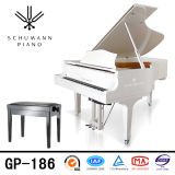 Schumann (GP-186) Instruments de musique Piano à queue blanche