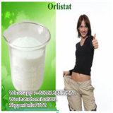 Polvo blanco superventas Orlistat CAS: 96829-58-2 para la grasa ardiendo