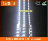 긴 수명 높은 루멘 DC12V SMD5730 LED 지구