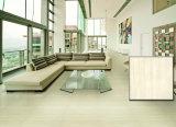Glasig-glänzende Porzellan-Fußboden-Fliesen (H6064)