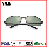 Aleación de profesionales del deporte ciclismo gafas de sol (Diseñador de los hombres YJ-F8485)