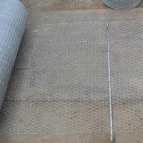 25mmのイギリスのための0.6m高い電流を通された六角形の金網の網