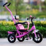 Kind-Kind-Spaziergänger-Fahrrad-Baby-Dreiradfahrrad mit Stoss-Stab