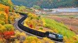 Giogo dell'accoppiatore degli accoppiatori dell'articolazione del treno e dei treni di ferrovia