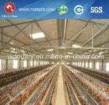 La capa de Uganda la maquinaria de la jaula de pollo de granja