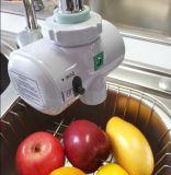 Épurateur de l'eau de générateur de l'ozone de taraud d'hydro-électricité (SW-1000)