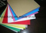 Panneau ondulé du plastique Sheet/PP Sheet/PP de pp pour l'emballage, Signage, protection