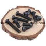 Schwarze runde Hauptmöbel-Schraube des Grad-10.9