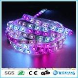 Tira SMD 5050 de la carrera de caballos del RGB LED 54 luz de LED/M 270LED los 5m 12V