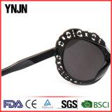 Occhiali da sole neri variopinti alla moda delle donne di Ynjn nuovi (YJ-25344)
