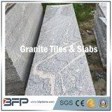 Il legno del materiale da costruzione gradice le mattonelle di pavimento della pietra del granito delle vene (800*800mm)