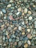 чернота 2-3cm отполировала камень естественного Cobble &Pebble