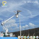 Niedriges Solarstraßenlaterneder Kosten-60W mit 8m Pole