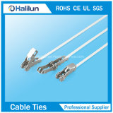 20*400/20*1500mm Ss pal-Lokt de Band van de Kabel voor het Bundelen van de Slang
