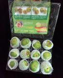 Populäre preiswerte Nahrungsmittelgrad-Plastikspannkorb-Großhandelsmaschinenhälfte, die für Früchte verpackt