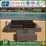 Sofá de la rota del PE del sofá del hotel del jardín con la mesa de centro (TG-JW03)