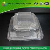 Contenitore impaccante di panino di plastica puro a gettare