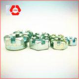중국 공급자 고품질 DIN 935 둥근 배열된 견과