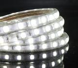 Indicatore luminoso di striscia di tensione LED di AC110V 220V 270V Hight per la decorazione esterna