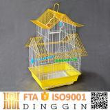 Las aves de jaula de razas de tamaño pequeño