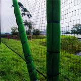 OEM 골프는 순수한 호주 시장 스포츠 그물을 실행한다