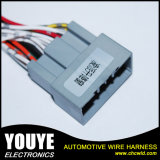 Power automotriz Window Wire Harness para Crider Car
