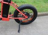 منافس من الوزن الخفيف درّاجة كهربائيّة لأنّ بنت/فتى يطوي إطار العجلة سمين [إن15194]