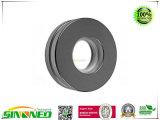 De Magneten van de spreker (de magneten van het Neodymium)