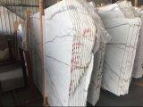 Tuile de marbre blanche de Calacatta de carrelage de l'Italie