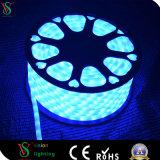 Colore del tubo del PVC che cambia l'indicatore luminoso della corda del LED per la decorazione di cerimonia nuziale