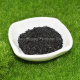 Extrait d'algues Flake Composition de l'engrais