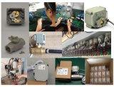 Materiale dell'acciaio inossidabile valvola di gestione elettrica della valvola motorizzata 2 pollici