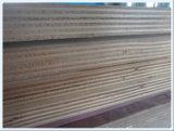 18mm de proveedor de China buena calidad de madera contrachapada comercial