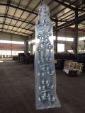 De ZijRol van het plastiek en van het Roestvrij staal of de Hoogste Transportbanden van de Rol
