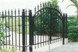 Ausgezeichnete gebildete bearbeitetes Eisen Irtro Türen