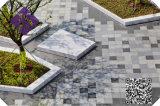 自然な石造りの灰色の炎にあてられた花こう岩の網の敷石の玉石
