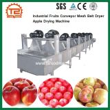 De industriële Drogende Machine van de Appel van de Riem van het Netwerk van de Transportband van Vruchten Drogere