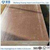 La película de alta densidad de suelo de madera contrachapada frente/camión/contenedor planta